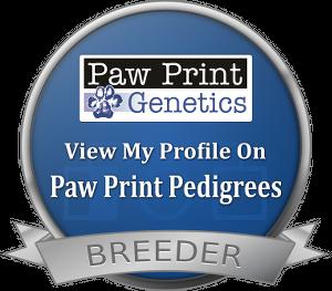 Goldendoodle & Bernedoodle Puppies - Breeder Seal
